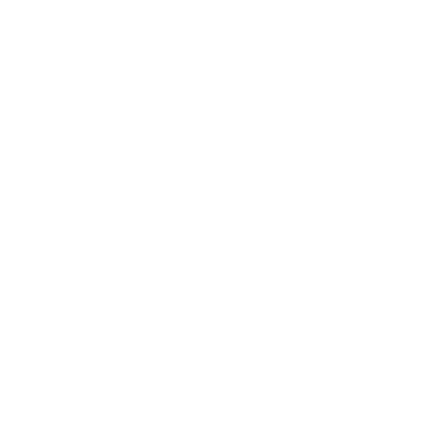 White HubSpot certified Partner logo